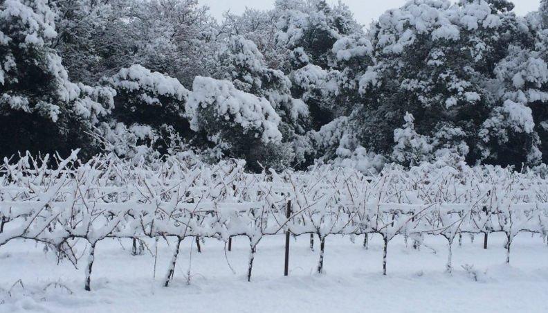 [Météo] Fin de l'alerte neige en Provence, la pluie remplace les flocons