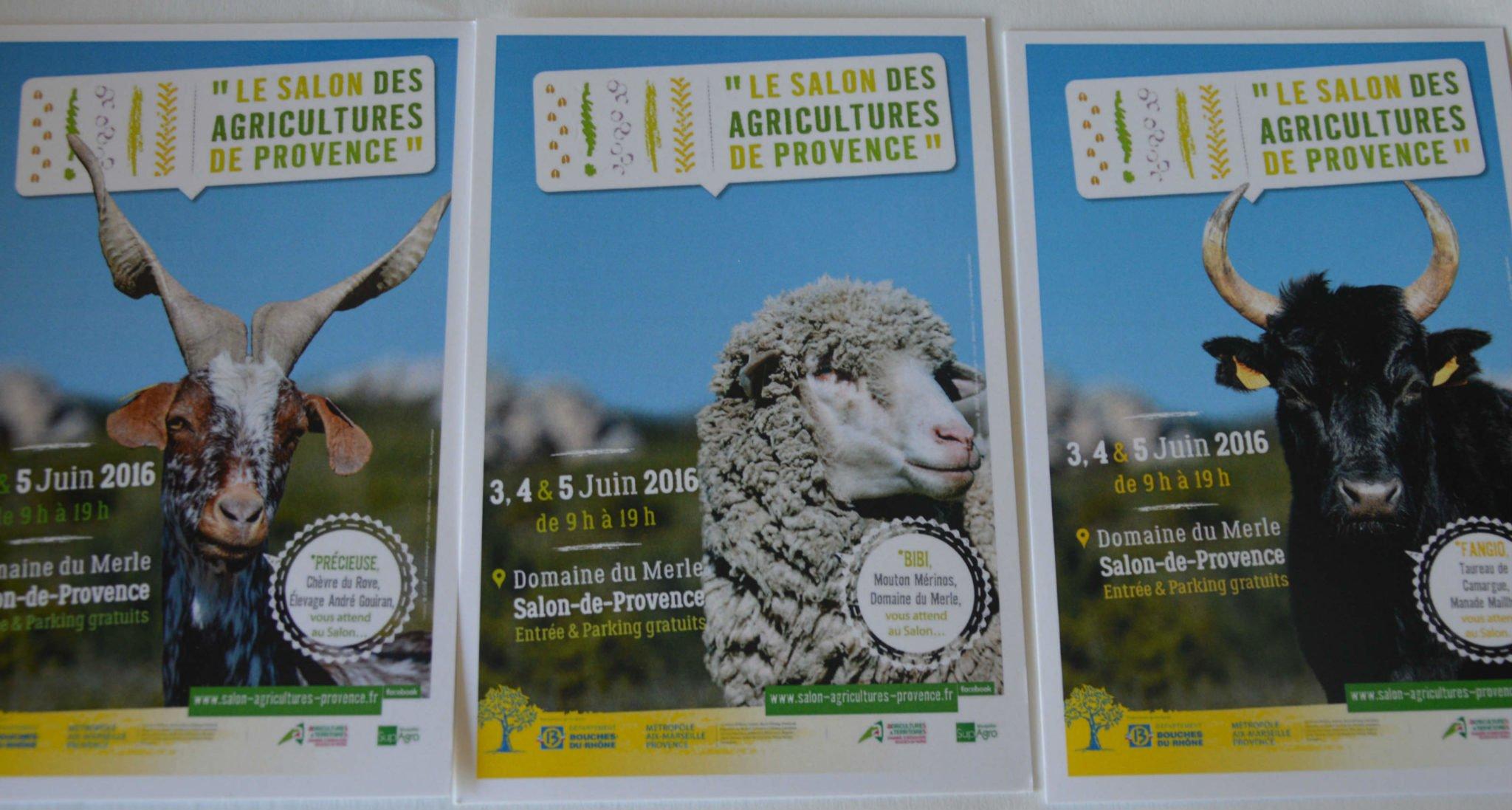 Economie le premier salon des agricultures de provence for Salon des agricultures de provence 2017