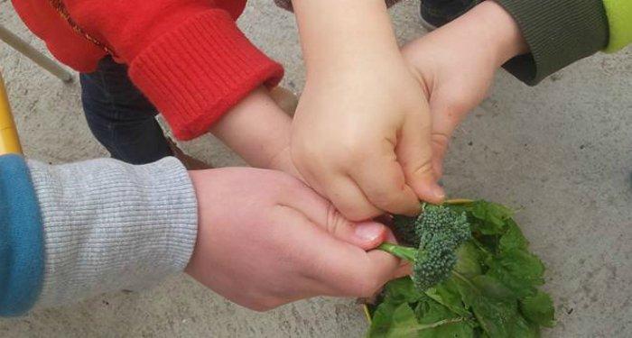 Fooding : Nos adresses pour déjeuner avec des enfants