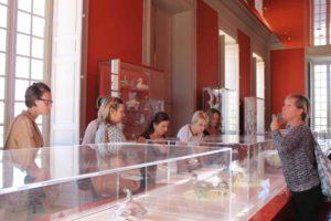 Les agences de voyage découvrent les collections du musée Borély