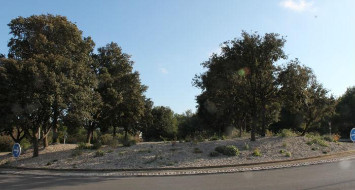En cours, l'aménagement de l'entrée de la ville pour une future 3e fleur