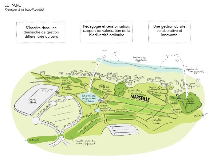 Le Parc proposera des déambulations autour de la biodiversité