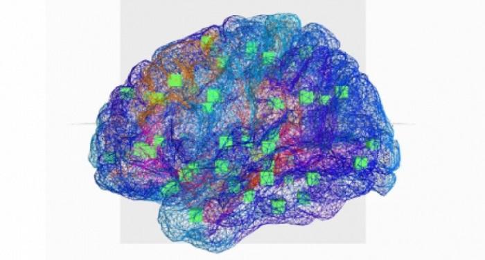 Le cerveau virtuel modélise les régions du cerveau et les connexions qui les relient. Les cubes verts indiquent le centre des régions qui sont connectées.