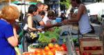 Le marché de Martigues (Crédit Ville de Martigues)
