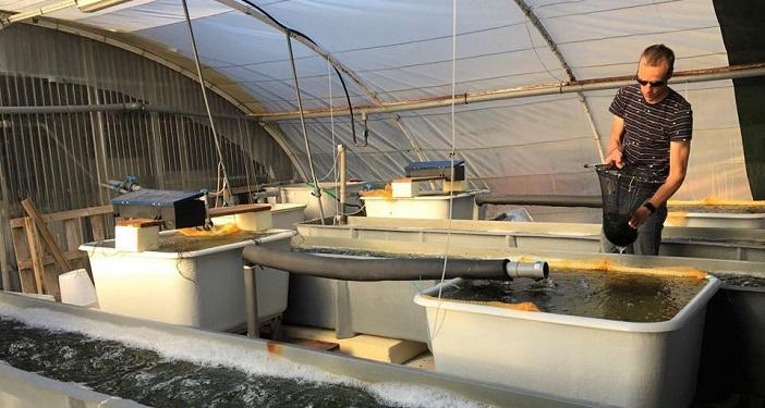 Dans ses laboratoires de l'Île des Embiez, l'institut Paul Ricard a déjà expérimenté l'aquaculture multitrophique intégrée (crédit Rémy Simide)